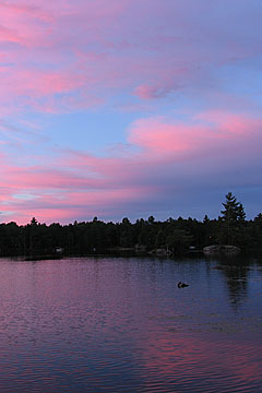 photo of a pink sky in the evening across a lake in the canadian shield by cliff homewood